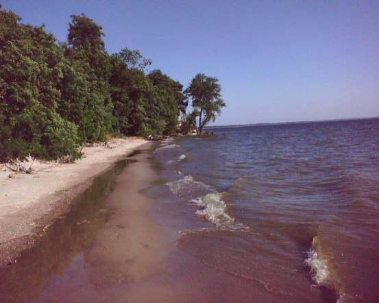 Пляж на левом берегу