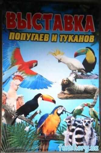 Вывеска выставки попугаев и туканов
