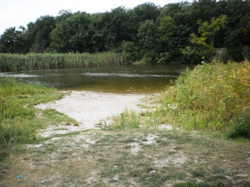 Соленое озеро в Полтавской области