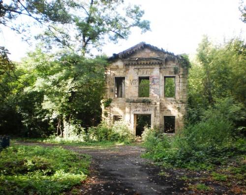 Здание библиотеки в Селезнеском парке