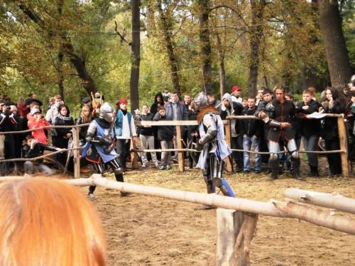 Исторический фехтовальный бой