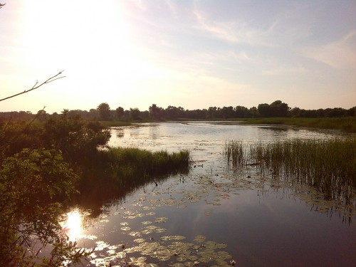 Плоское озеро