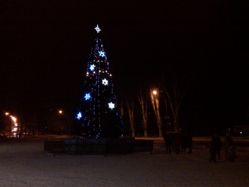 Новогодняя елка ночью