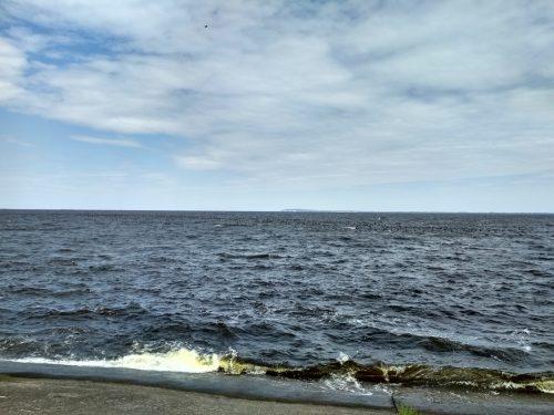 Птичья стая над Днепром