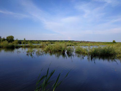 Рыбалка в с.Андрейки, Полтавская область