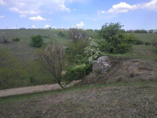 Старая дорога на Павловку, Светловодский район