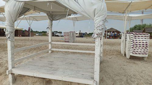 Нашествие солнышек на пляже